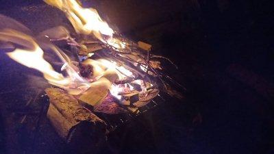 【ゆるキャンプ】カツオの刺身ととクリームシチューを堪能した件【21泊目】