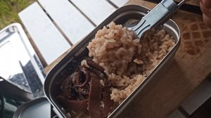 【ゆるきゃんぷ】アオリイカ釣りの合間に干物とイカ飯食ったった【26.5回目】